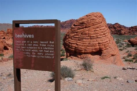 Beehives near north entrance - Picture of Valley of Fire