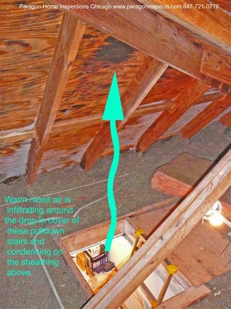Frost in Attic What to do? - DoItYourself