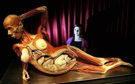 Flayed babies' bodies included in new Body World