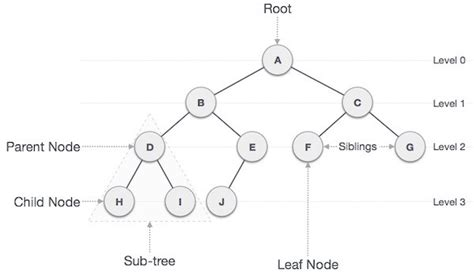 6 Data Structures in 6 Minutes – Michelle – Medium