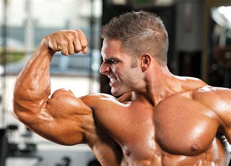 Carbs: The Anabolic Nutrient - Muscle & Performance