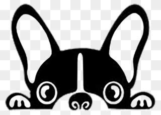 Free PNG Boston Terrier Clip Art Download - PinClipart