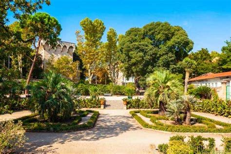 5 Things to Do in Montpellier, France - International Living