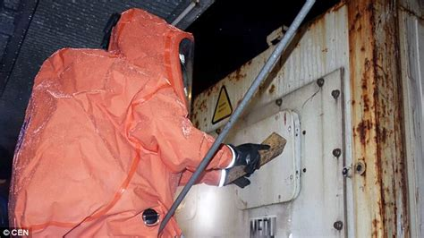 German firefighters don HAZMAT suits to deal with spiders