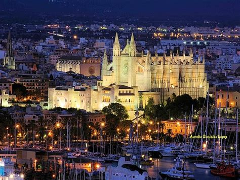 A passion for Palma - just2ticketsplease